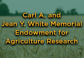 Carl A. and Jean Y. White Memorial Endowment for Agriculture Research button
