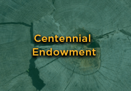 Centennial Endowment Button