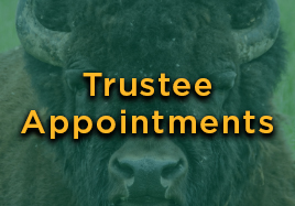 Trustee Appointments Button